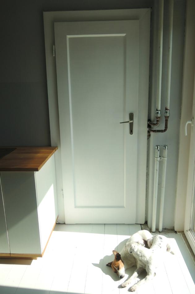 pantry door 11